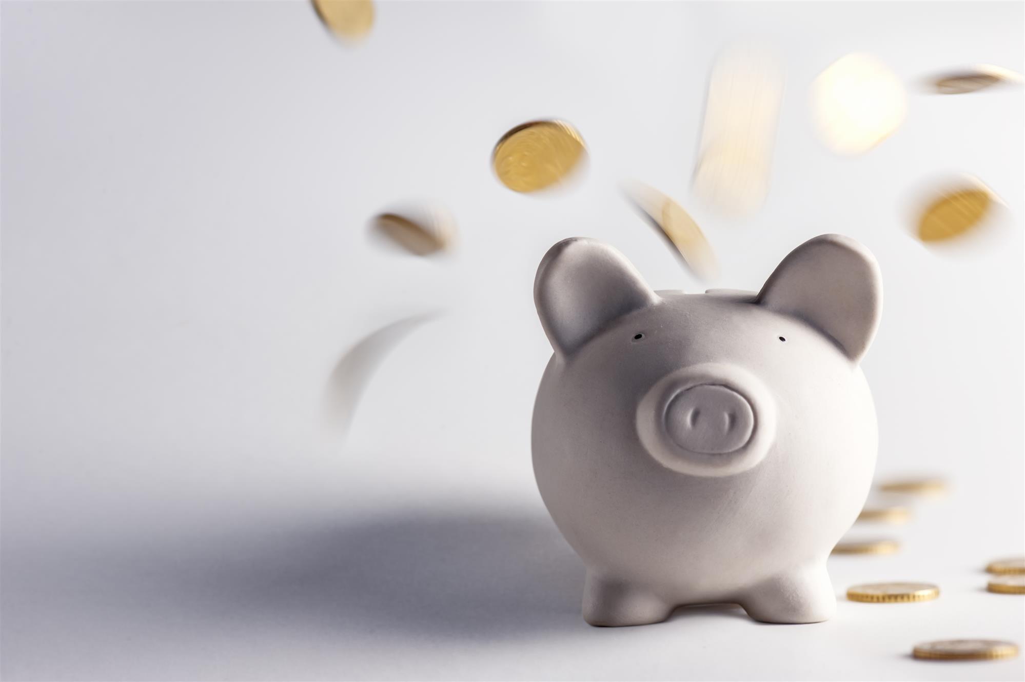 Financial Management Fundamentals & Alternative Career Options After Retirement